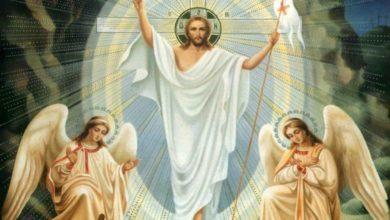 Photo of Revestidos del Hijo de Dios
