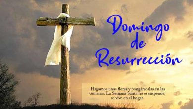 Photo of Reto#EnFamilia+: Material para la Liturgia&Catequesis del Domingo de Resurrección